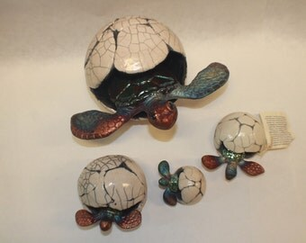 Honu Hatchling (Sea Turtle Hatchling) *** (w/ FREE SHIPPING!)