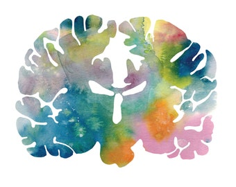 "Human Brain Art Print - 8.5"" x 8.5"" Watercolor Neurology and Neuroscience Illustration Prints for Psychologists and Neurologists"