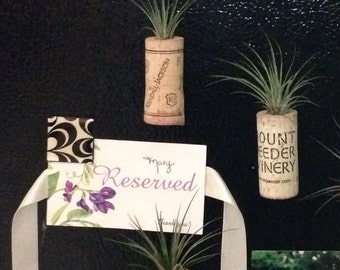 Wine Cork and Air Plant Magnet Planters