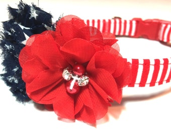 Independence Dog Collar,  Fourth of July Dog Collar, Flower Dog Collar