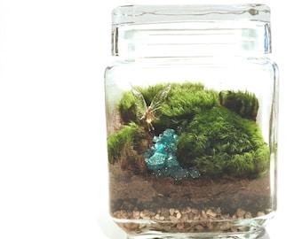 Moss Terrarium // Fairy