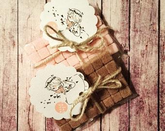 Sugar Cubes Hostess Gift Vanilla Bean and Cinnamon Sugar Pack