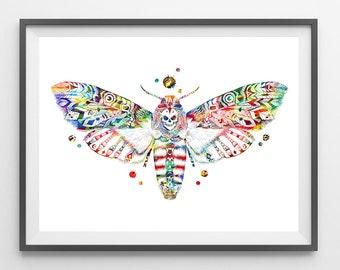 Moth Watercolor print Butterfly illustration Tiger Moth poster tribal moth wall decor moth watercolor painting boho art wall art gift [N326]