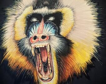Baboon Illustration