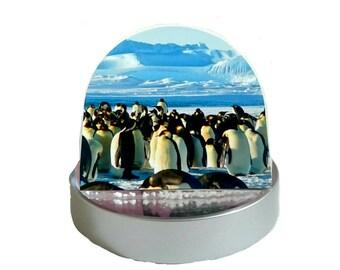 Emperor Penguins in Antarctica - Glitter Dome/ Snow Globe, Snowglobe