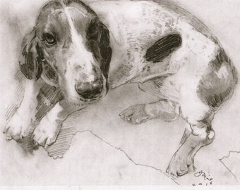 Original Dog Drawing
