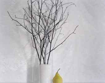 White Birch Twigs Set Of 12 Hand Painted Branches