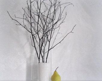 Woodland home decor branches, black grey branches, contemporary decor, decorating supply, modern minimalist decoration idea, vase filler