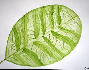 Gardenia, artwork, watercolor, nature art, original