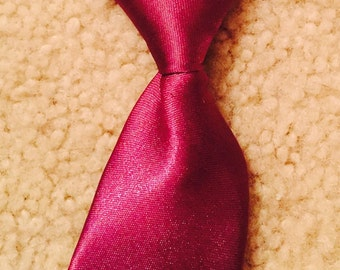 Small Dog Red Neck Tie