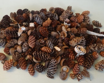 Fall Pinecone Mix, Fall Decore, Basket Mix, Potpourri Mix, Fall Potpourri, Vase Filler