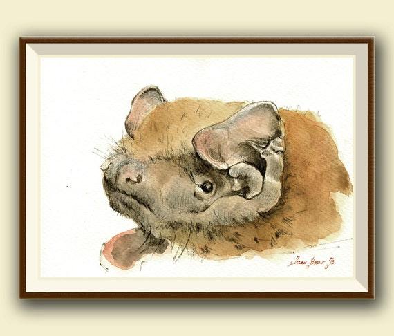The Greater Noctule Bat Nyctalus Lasiopterus Bat Art