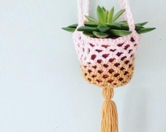 Crochet Plant Hanger (pale pink/tan)