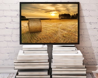 Field poster Sunset decor Landscape print