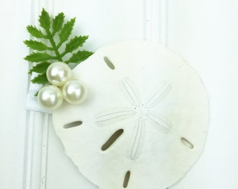 Beach Sand Dollar Pearl Accent Hair Clip