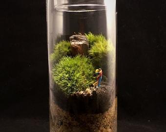 Kissing Couple Terrarium-Moss Terrarium-TerraSphere