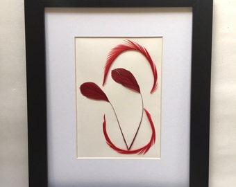 Natural Feather Art. Red Stripped Coque Tail Feather. Feather Art.