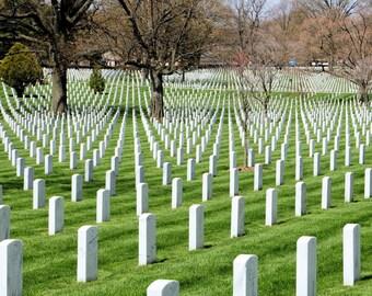 Arlington - The Fallen