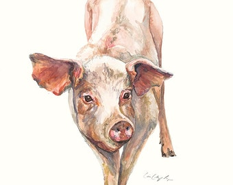 Adult Cow Sow Pig Watercolor Print Painting Art by Cris Clapp Logan
