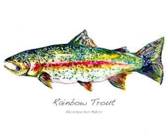Rainbow Trout Watercolor Giclee Limited Edition Print by Cris Clapp Logan