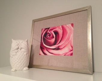 Rose Photograph Print