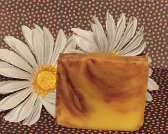 All Natural Pumpkin Soap