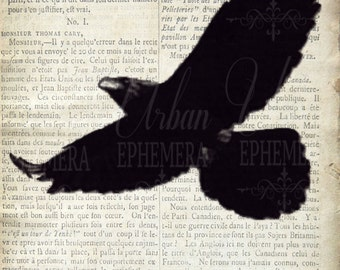 Beatles Lyric Art Printable - Blackbird