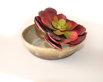 Vintage pottery,Handpainted, Hand thrown pottery, Bonsai garden, succulent planter