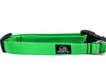 Clip Collar - Neon Green