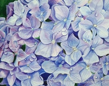 """ORIGINAL Watercolour Painting, """"Hydrangea"""", Hand Painted Flowers, Art on Watercolour Paper"""