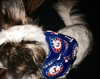 Texas Rangers scarf