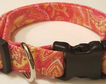 Dog Collar, orange/pink paisley, paisley print dog collar, vera bradley inspired