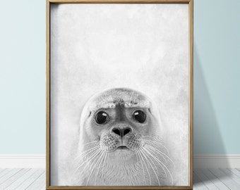 Seal Print Seal Poster Wall Art Print Animal Print Seal Art