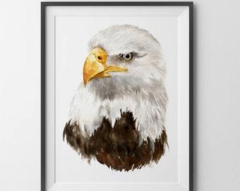 Bird art print - Eagle print watercolor.fine art. Birds painting. birds poster.birds art.Eagle painting