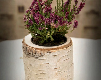 Rustic Birch Decorative flower pot