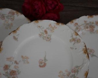 Haviland China Plates