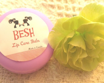 Handmade All Natural Macaron Lip Balm, Cute Lip Balm, Perfect as a Gift, Wedding Favors