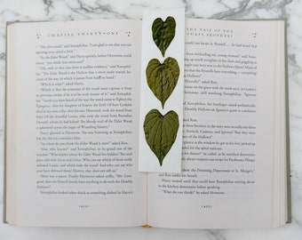 Real botanical bookmark with 3 heart-shaped leaves