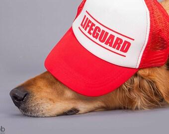 Life Guard Dog