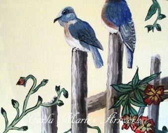 Asian Blue Birds