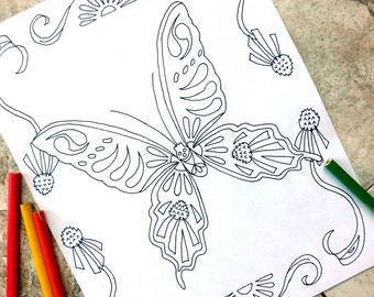 Butterfly, coloring pages, butterflies, flower, coloring page, Echinacea, garden, spring, flower bed, wellness, nature