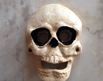 Skull wall decor