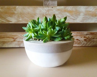 Painted Base Round Concrete Planter