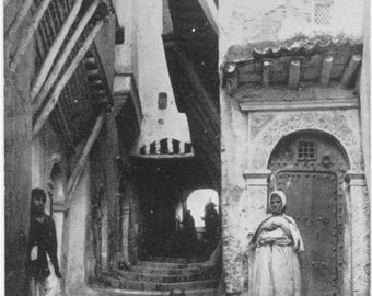 Alger ALGERIA Children on Steps @ La Rue du Chameau POSTCARD Carte Postale