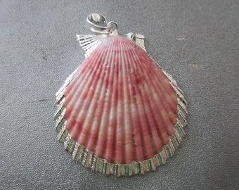 Sea Shell Trimmed Edges Pendant 1pc