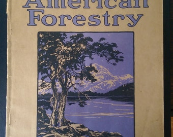 American Forestry Magazine of the American Forestry Association June 1918