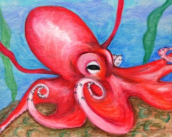 The Pink Octopus