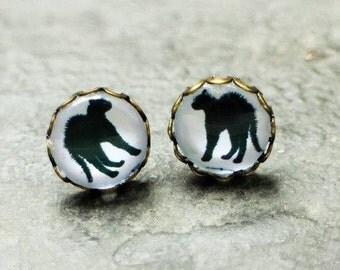 Angry Black Cat Kitten Kitty Stud Earrings
