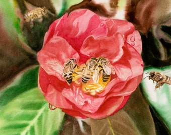 Camelia with Bees