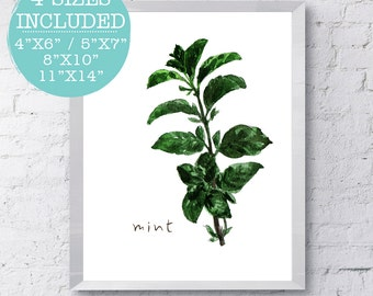 Mint, Herbs Print, Green Watercolor Herbs, Kitchen Art, Kitchen Decor, Kitchen Printables, Kitchen Prints, Trending Kitchen, Kitchen Herb